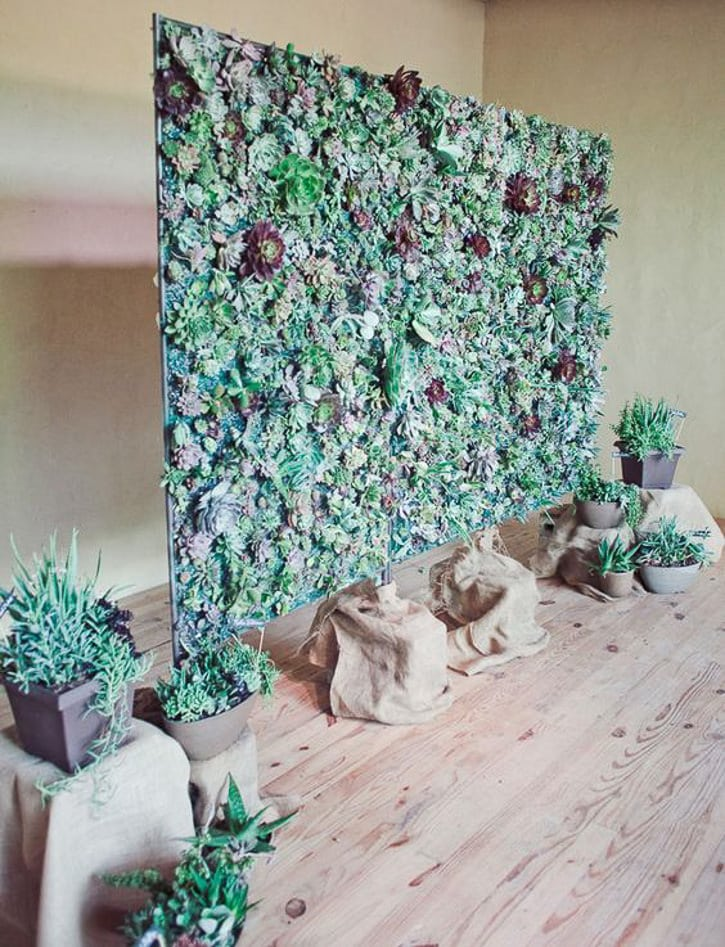 56 stunning yet simple diy photo booth backdrop ideas mixed plants solutioingenieria Choice Image