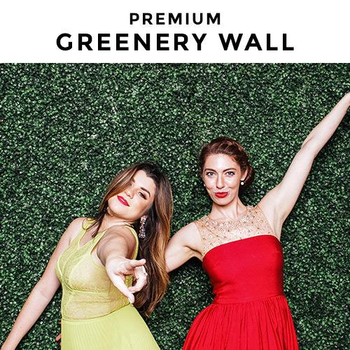green hedge wall backdrop